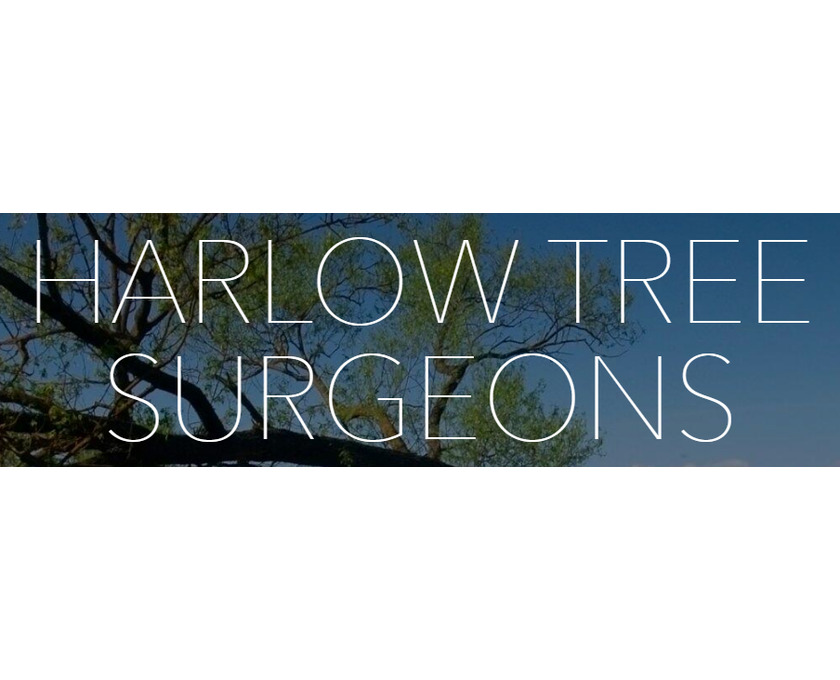 HARLOW TREE SURGEON - 1/1